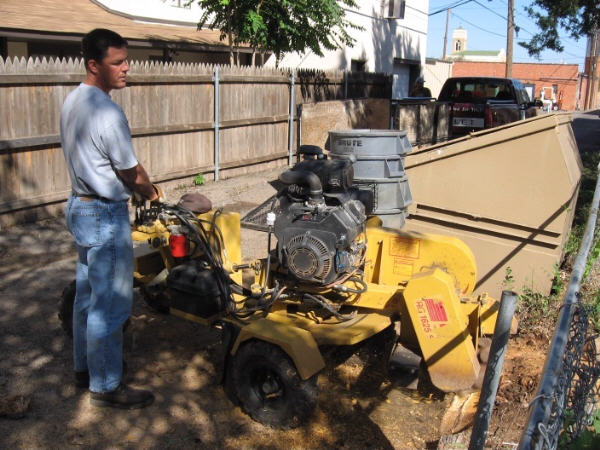Stump Removal and Cleanup